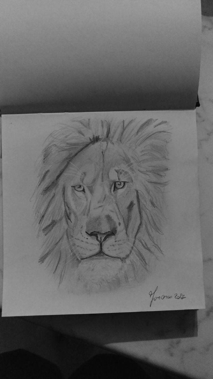 Leone - Disegno #2