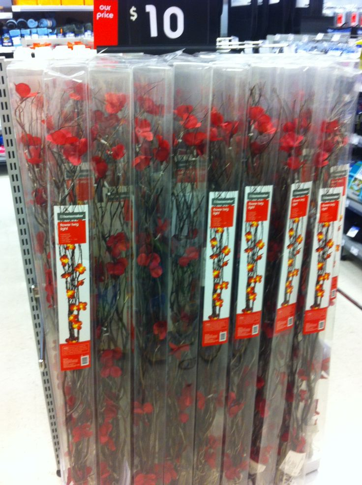 Flower lights available from Kmart