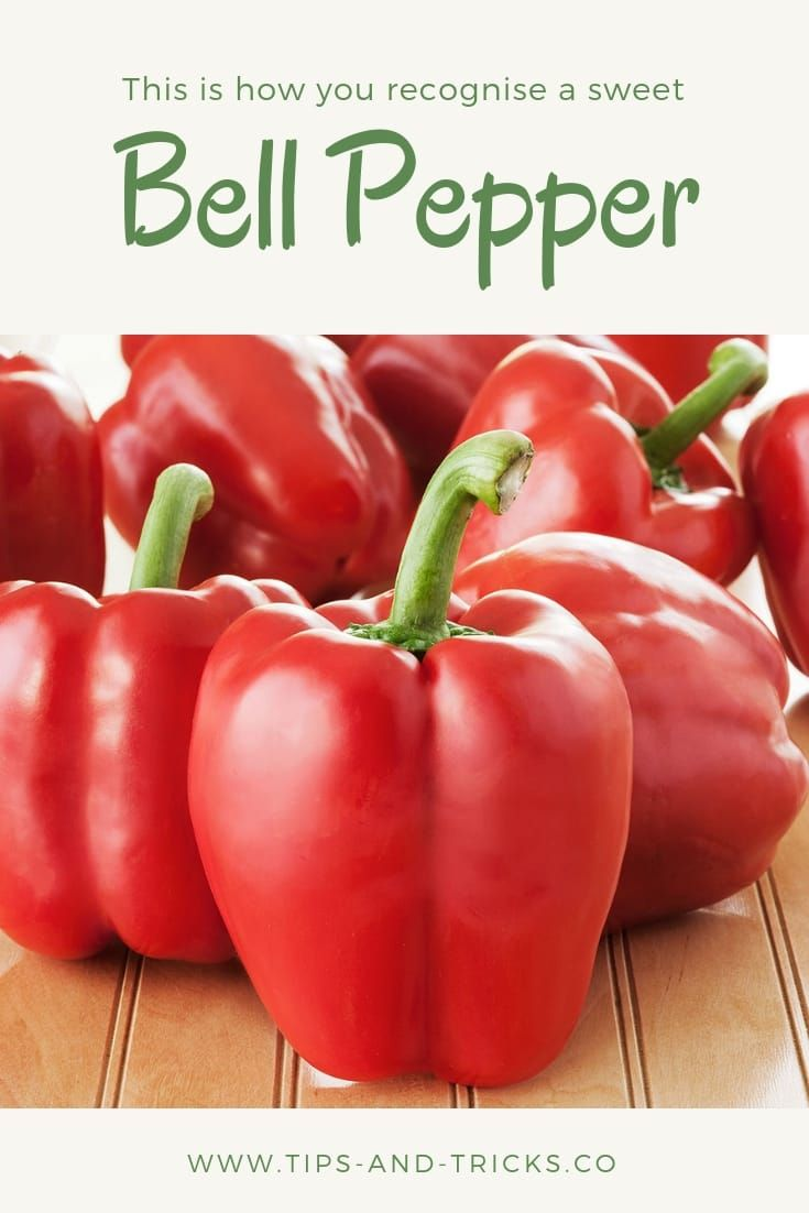 This Is How You Find Out Which Bell Pepper Is Sweetest Sweet Bell Peppers Stuffed Peppers Stuffed Bell Peppers