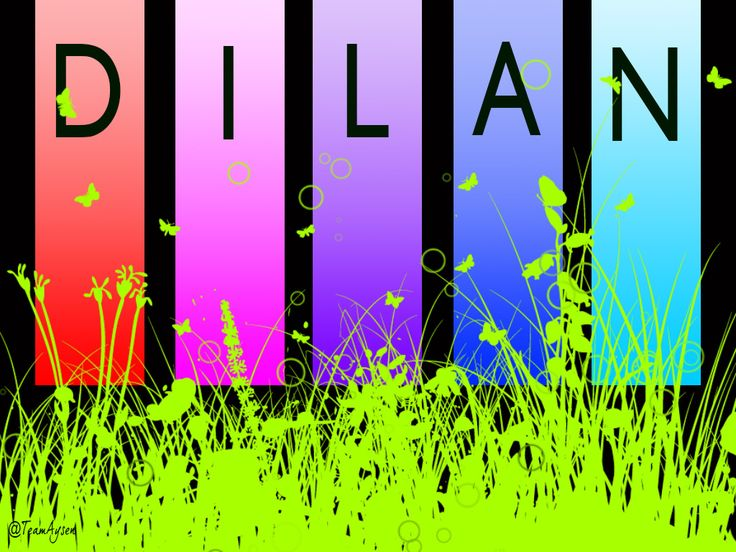 Dilan Wallpaper