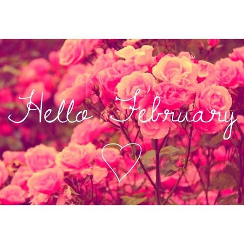 Hello February Month Quotes Welcome