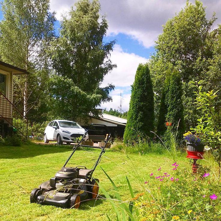 ..garden catch-up time!!! ........ #howsshecuttin #lawnmower #garden #cuttingthegrass #grass #mower #summer #lawn #honda #hondamower #trees #instagarden #mowing #instagrass #lawnmowers #green #trädgård #gräsklippare #gardening #nature #mygarden #greenfingers #gröna #finland #instafinland #hondaengine