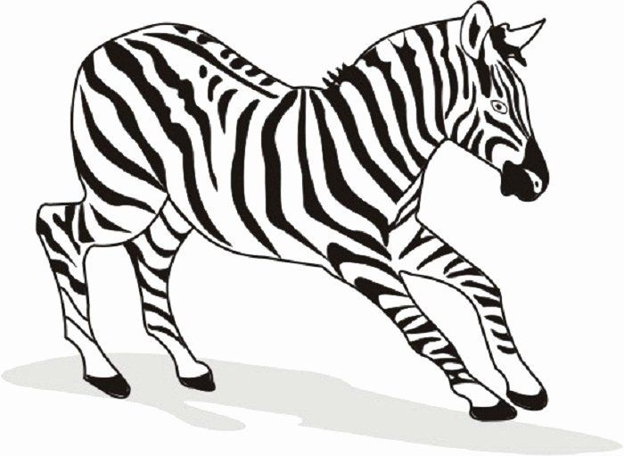 Zebra Coloring Pages Printable Inspirational Free Printable Zebra Coloring Pages For Kids Animal Coloring Pages Zebra Coloring Pages Giraffe Coloring Pages
