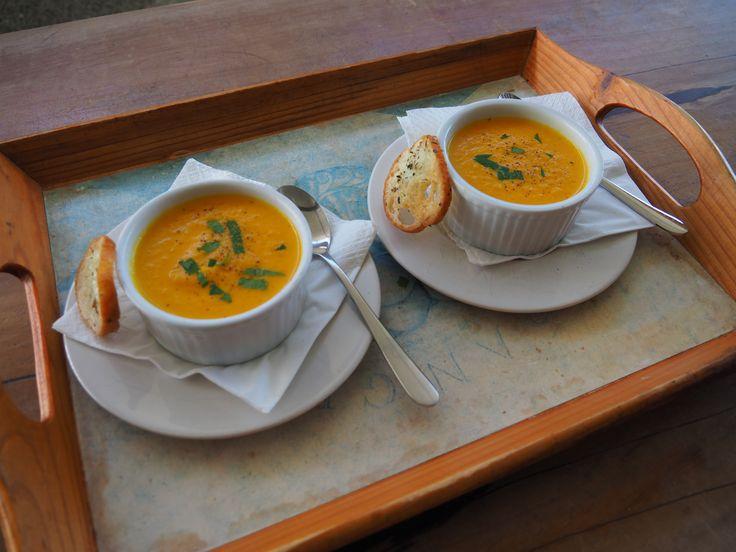 soup shot starters