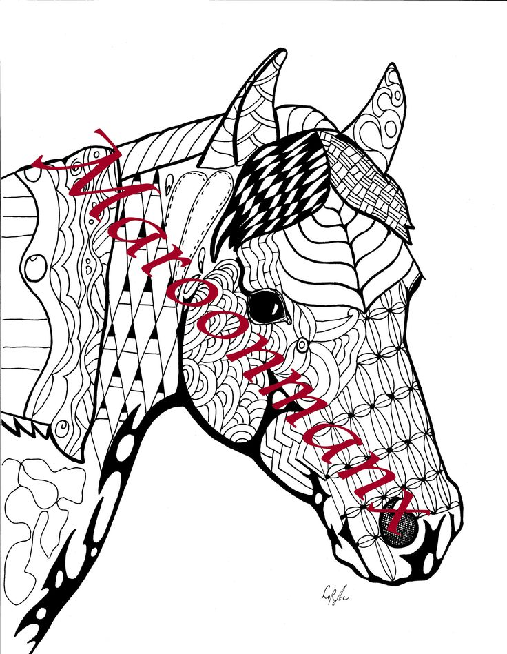Pair of Arabian Horses Equine Positive Therapy Gift Printable Digital Coloring Page by Maroonmanx on Etsy