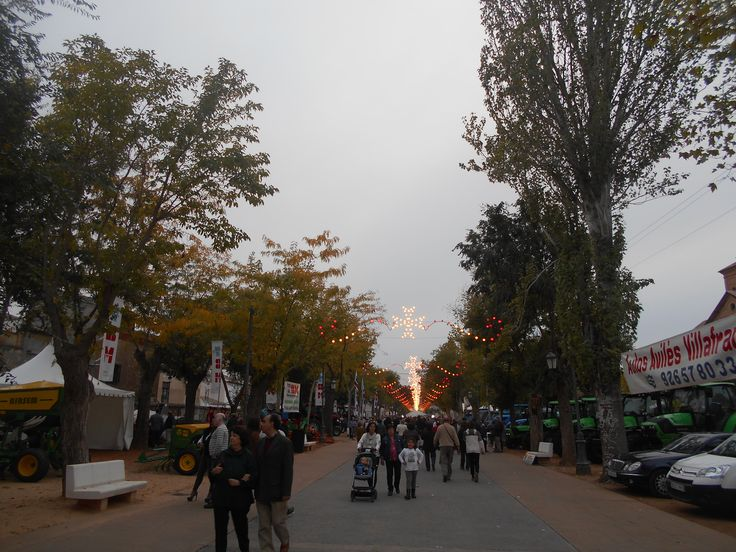 Feria agrícola coincidente con la LIII Fiesta de la rosa del Azafrán- Consuegra.,
