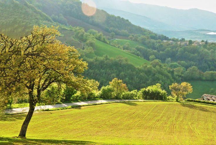 Parco Monti Sibillini, Marche, Italy - by Gianni Del Bufalo CC BY-NC-SA IMG_4530_stitch