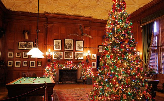 Love Biltmore Christmas?  If so, join my team for just $199 at www.biltmoreinspirations.com/biltmoreinspired