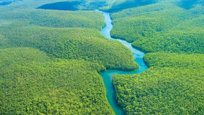 LUXURY DESTINATIONS: AMAZON RAINFOREST, HEAVEN LIKE PLACE ON EARTH
