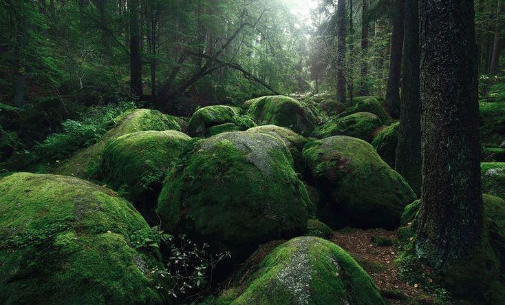 Mroczne krajobrazy inspirowane powieściami braci Grimm - Joe Monster