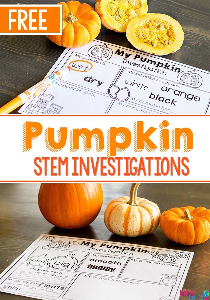 These fun pumpkin STEM investigations for preschoolers are a great addition to your fall theme. The free printables make it easy to record their pumpkin observations.  via @lifeovercs