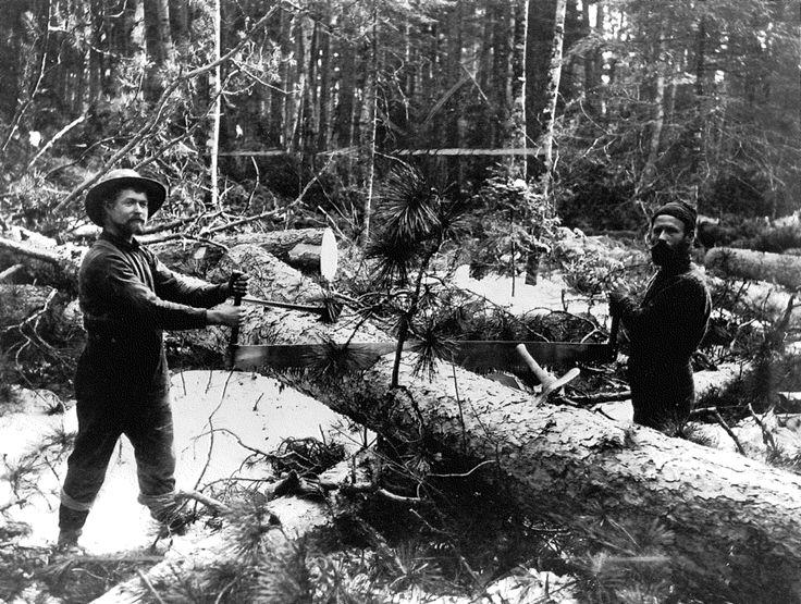Lumberjack Sawing Events World Chionships Hayward Wisconsin Timber Sports Chopping Logrolling Pole Climb