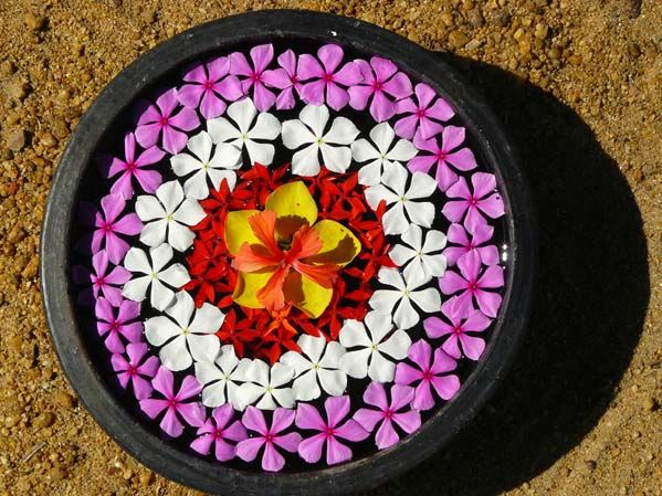 Water Bowl Decoration 118 Best Ganesh And Decorations Images On Pinterest  Ganesh