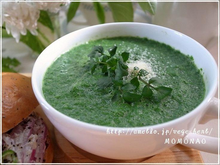 忙しい朝の豆乳スープです♪ミキサーにかけて温めるだけのスピードレシピヾ(@°▽°@)ノ豆乳の割を減らして緑鮮やかにしました。玉葱の新陳代謝増進効果や解毒作用は、加熱する前に(水にさらさず)15~30分置くと安定して熱で壊 …