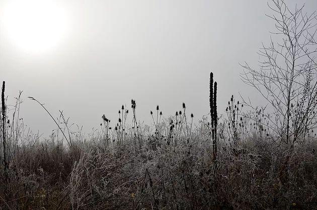 Tableau d'hiver 3