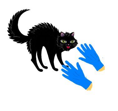 Geen katje om zonder handschoenen aan te pakken --geen gemakkelijk persoon.