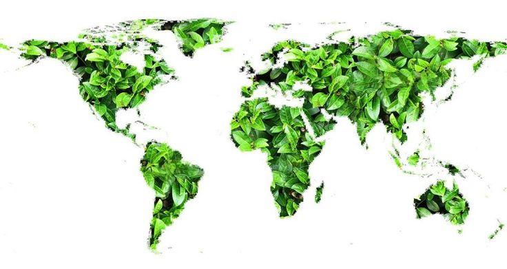 Un mondo green! Sognalo con noi. www.magazine.verdeelettrico.it
