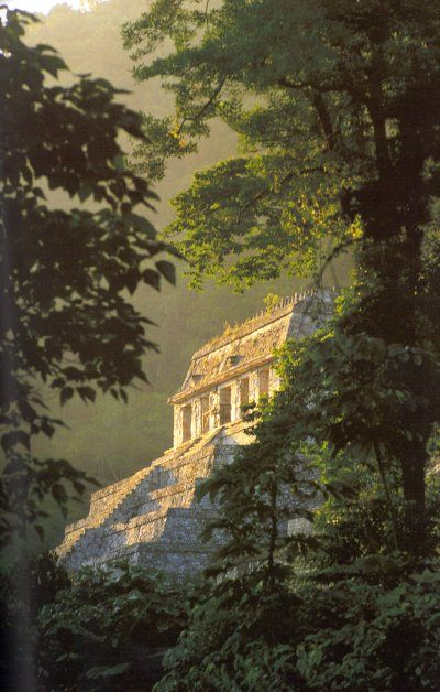 Palenque, Mexico. Going there this summer <3