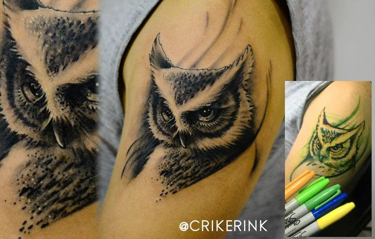 Owl CRIKER