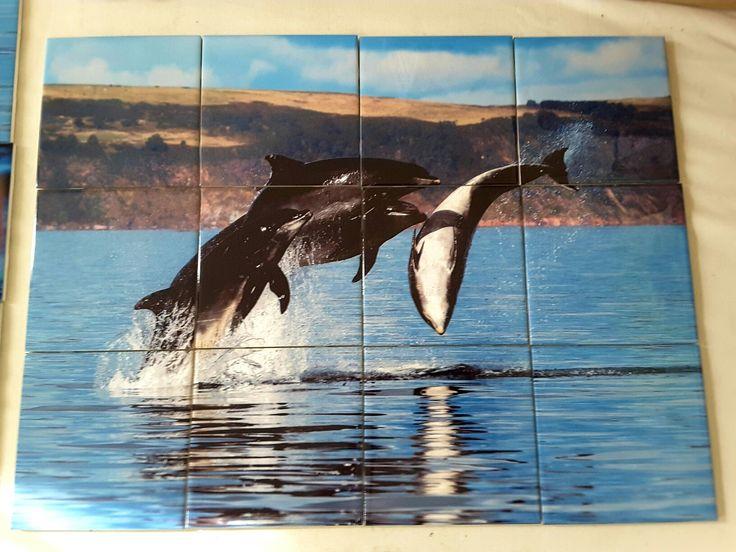 Dolphine Tile Mural Www.tilemuralstore.co.uk #tilemural #kitchensplash  #dolphins
