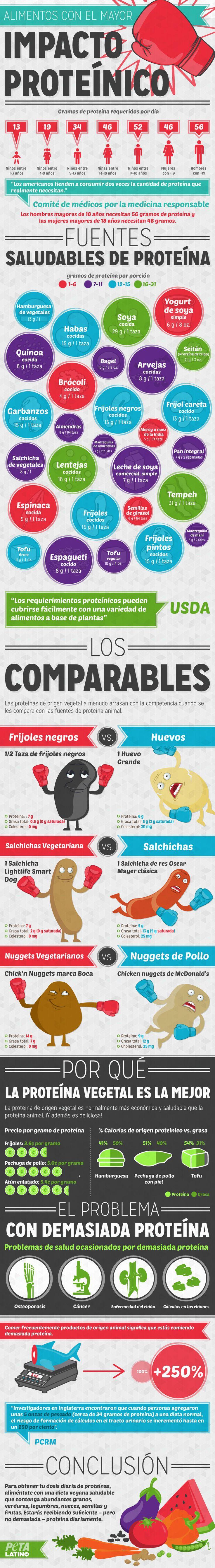 Fuentes saludables de proteina
