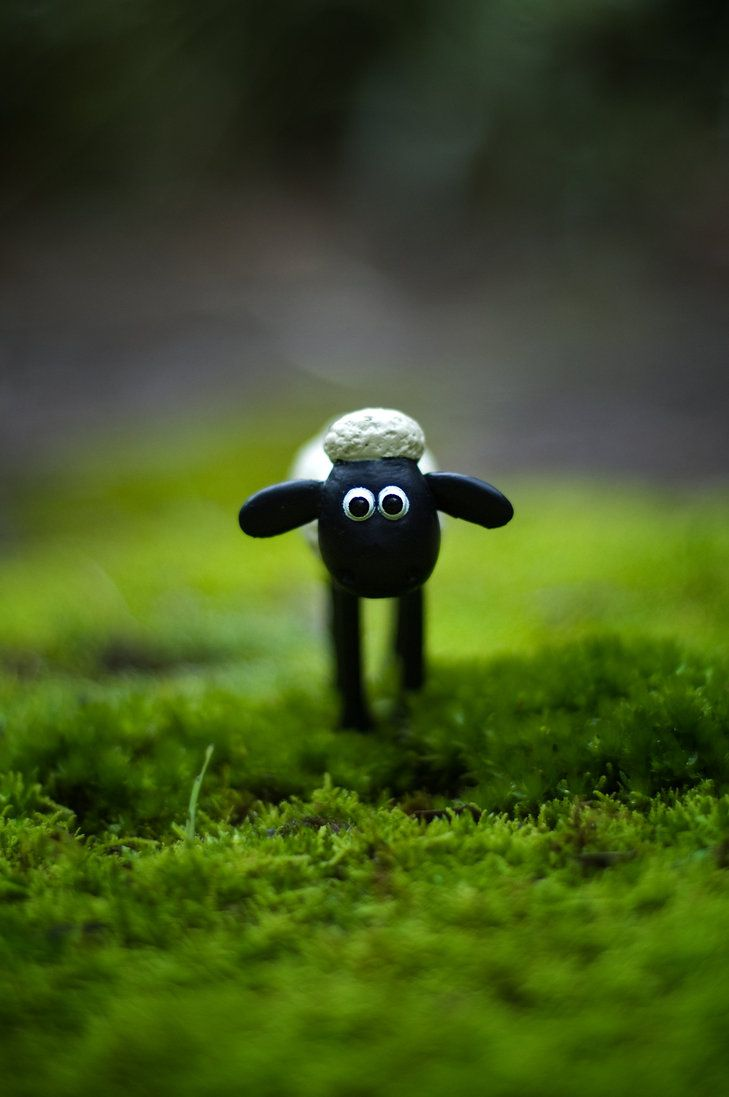 Shaun The Sheep IPhone 5 Wallpaper