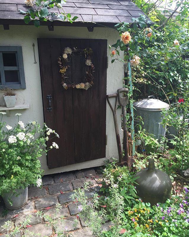Instagram media by natu.garden - ・ *my garden* ・ こんにちは♡ 春頃のpic。 ・ 今日は朝起きたら雪が❄️積もってました。 寒いと思ったらやっぱり雪。 インフルも流行ってるみたいだからマスクして頑張ろ〜! 後、4ヶ月もしたら庭が華やかになるよね〜♡ ・ よい1日を… ・ *・゜゚・*:.。..。.:*・・*:.。. .。.:*・゜゚・* ・ #garden#gardener#gardening#home#instagarden#instapic#gardenpic#nature#naturalgarden#fleur#Green#flower#ガーデニング#ガーデナー#ガーデン#花#暮らし#ナチュラルガーデン#庭作り#庭師#ナチュラル#庭#花フレンド#花のある暮らし