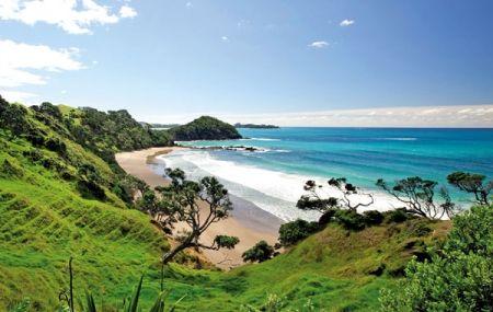 Daisy Bay, just north of Sandy Bay, East Coast, Tutukaka