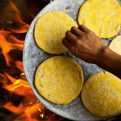 Tortillas på svenskt vis