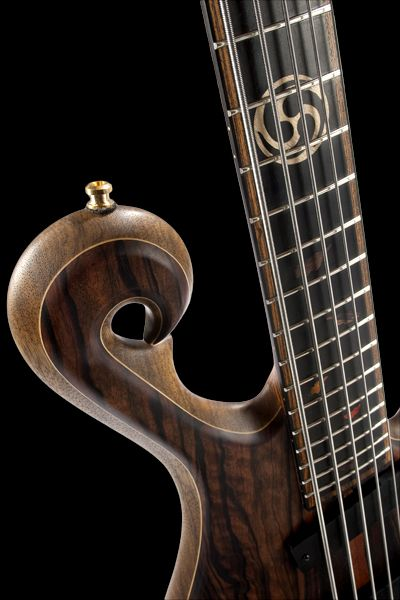 Scroll Fretboard Inlays And Ebony Covered Neck Pickup Of