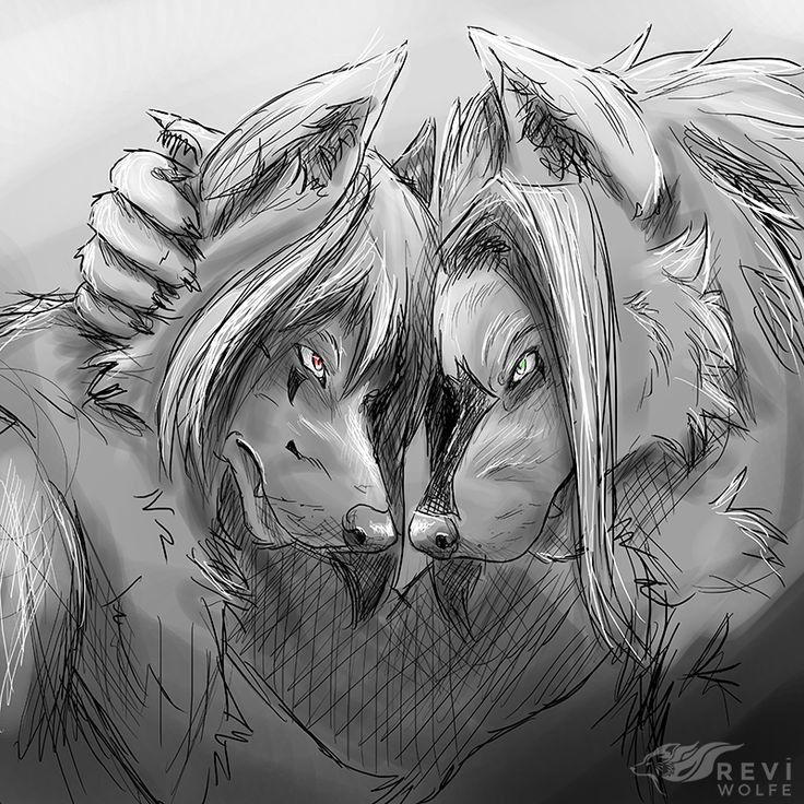 """Nemesis Buddies  A quick sketch of the part where Doom tells Remon they're enemies and close friends.  """"One day, you will betray me. May that day be your last.""""  The fact they are enemies is because of their wolf species.  Remon, being a Globelwolf and Doom being a Djotranawolf are hostile towards each other as they are both the complete opposite by personality.   Remon & Doom © Me Art © Me"""