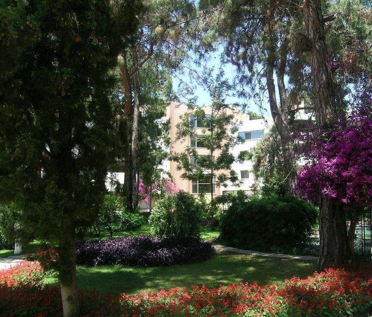 Beautiful garden of Turquoise Hotel.
