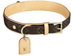 Image Result For Dog Accessories