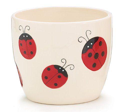 Ladybug Flower Planter Adorable Home Decor Burton & Burton http://www.amazon.com/dp/B00AWVMYL0/ref=cm_sw_r_pi_dp_CCW4tb1K90HC6