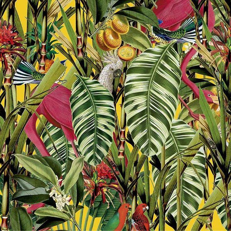 Carte da parati tropicali - Carta da parati originale