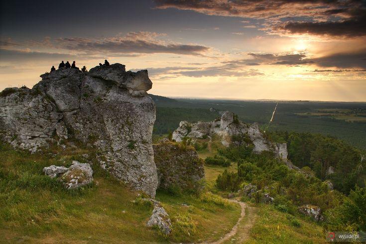 Rezerwat przyrody Góra Zborów, Jura Krakowsko-Częstochowska, Polska