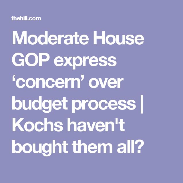 Moderate House GOP express 'concern' over budget process | Kochs haven't bought them all?