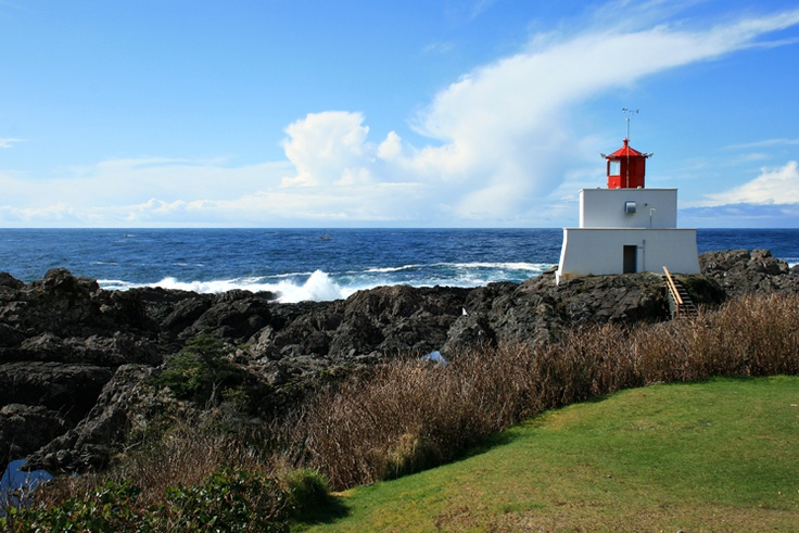 Ucluelet, BC Canada...loved this spot for climbing on the rocks and exploring tide pools.