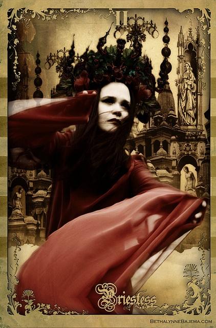The Priestess Card, Black Ibis tarot deck #kambriel #bethalynnebajema #bajema #blackibis #tarot #tarotcards #cartomancy #divination #fortunetelling