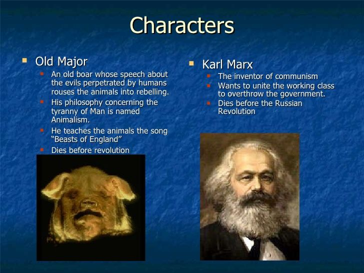 A comparison of russian revolution leaders and the characters in animal farm by george orwell