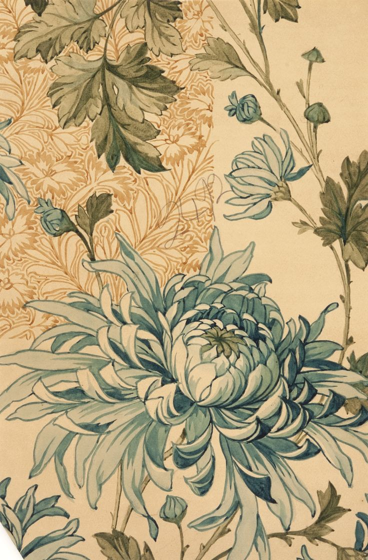 Sketch for wallpaper design from the Silver Studio Collection at MoDA #ColorOurCollections