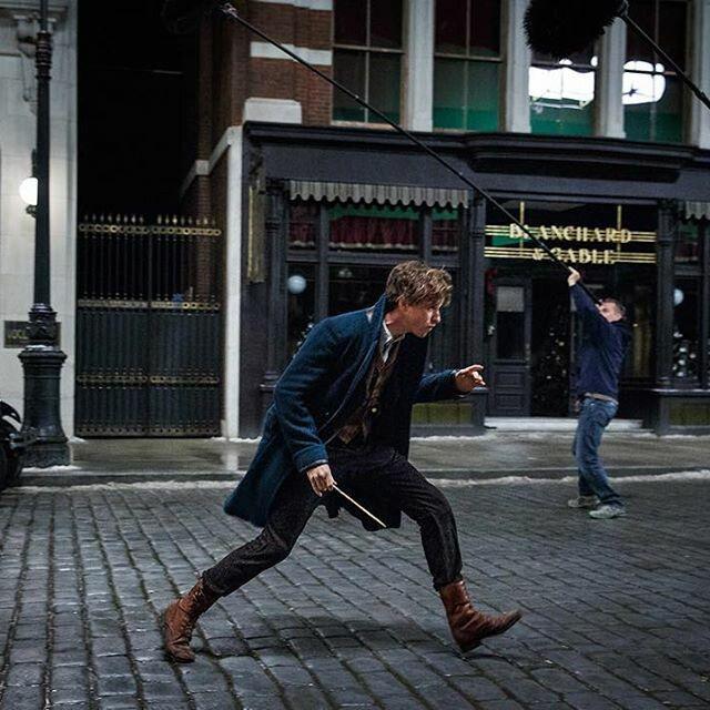 Newt Scamander | Fantastic Beasts..