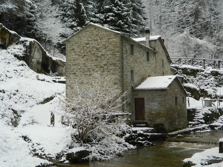 Mengozzi Ancient Mill in The Foreste Casentinesi Park!