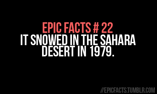Epic Facts #86
