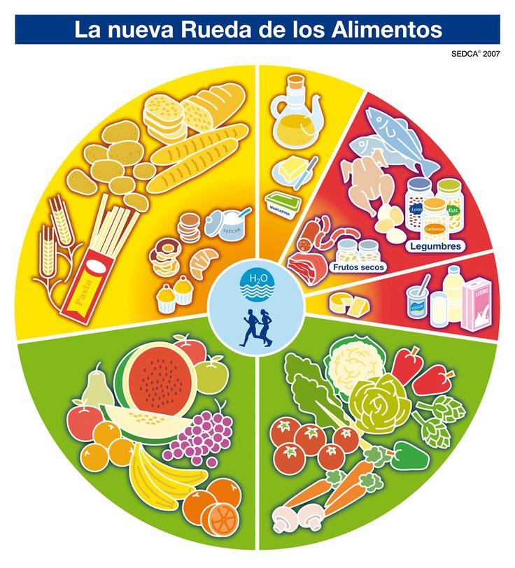 el plato del buen comer para niños de preescolar para colorear - Buscar con Google
