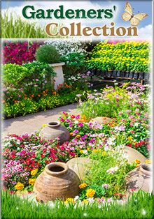 396 best Garden and Yard Catalogs and Outdoor Ideas images on