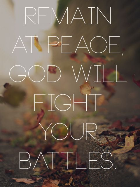 "spiritualinspiration: ""The Lord will fight for you, and you shall hold your peace and remain at..."