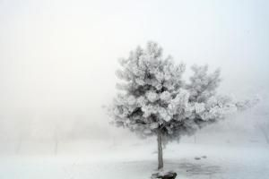 Calendarul zilei - 15 decembrie http://scrieliber.ro/calendarul-zilei-15-decembrie/