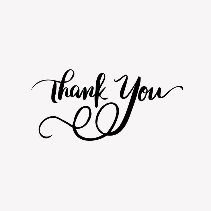 Thank You Hand Lettered Stamp Products Pinterest