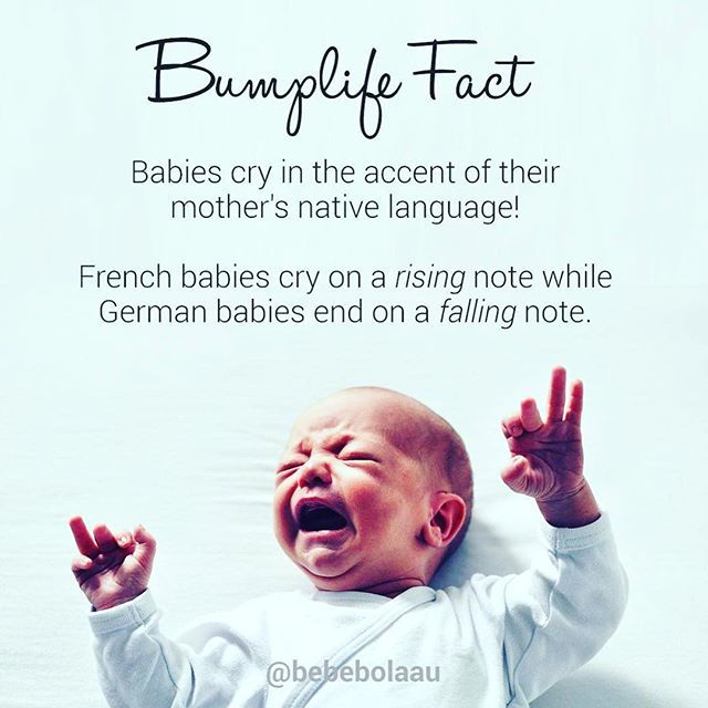Did you know.. babies cry in their mothers native accent? Bebe Bola Bumplife fact.